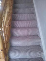 Single Tone Carpets Gallery